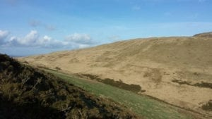 bwlch corog view