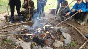 Schools visit Cambrian Wildwood